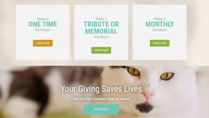 make money blogging with donations