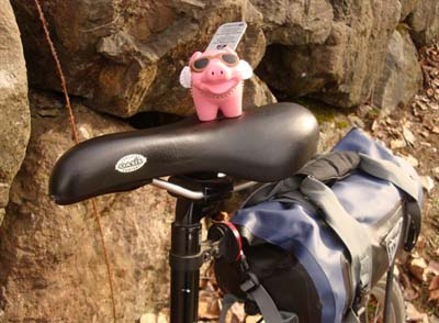 Pigs on bikes
