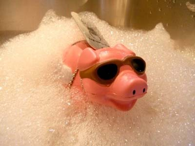 Baby pig gets a much-needed bubble bath