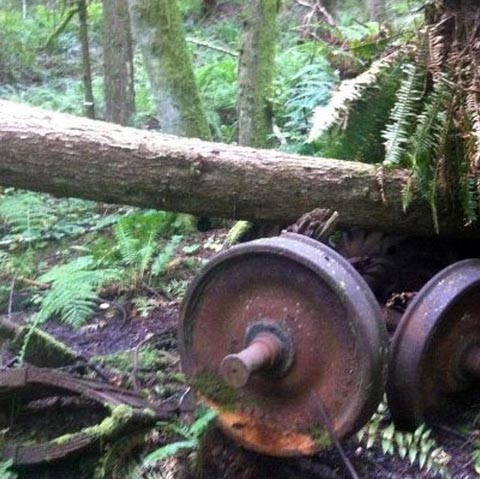 1925 Train Wreck, Tiger Mountain State Forest
