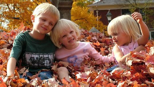 Fun Ideas for the Family During Autumn