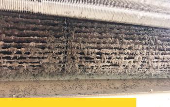 夏天前更要 清洗冷氣 三大原因,別讓黴菌繼續放置繁殖!