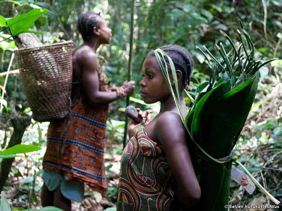 Hunters And Gatherers Pics Non Violent