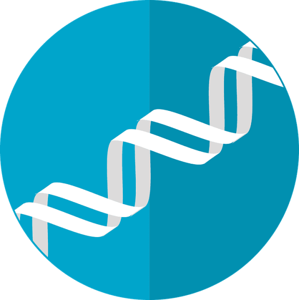 Zipping genetic data in DNA could enable scientists to