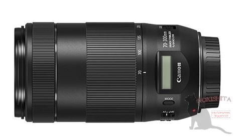 Canon EF 70-300mm F4-5.6 IS Ⅱ USM與EF-M 18-150mm IS STM實照曝光?   DIGIPHOTO-用鏡頭享受生命