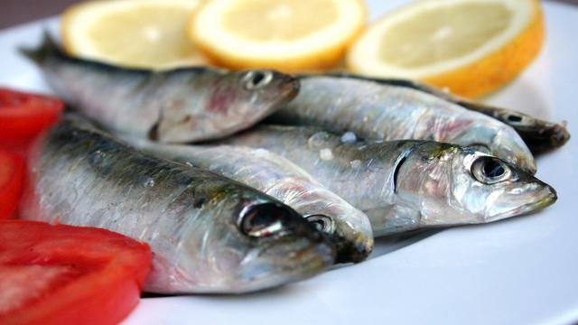 Tak Cuma Kaya Protein, Ini 5 Alasan Makan Ikan Sarden