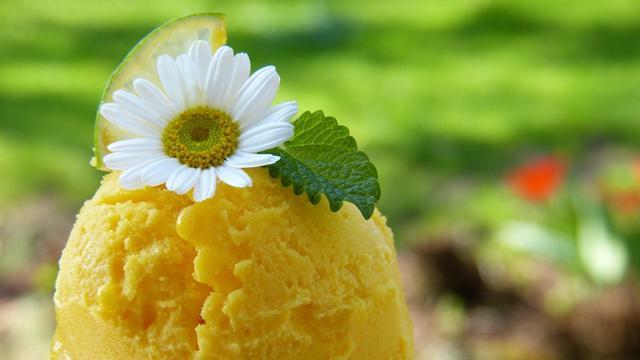 Cara Membuat Es Cream