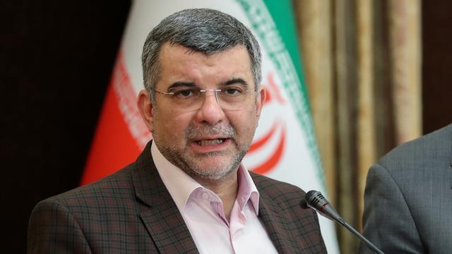Wakil Menteri Kesehatan Iran Positif Virus Corona