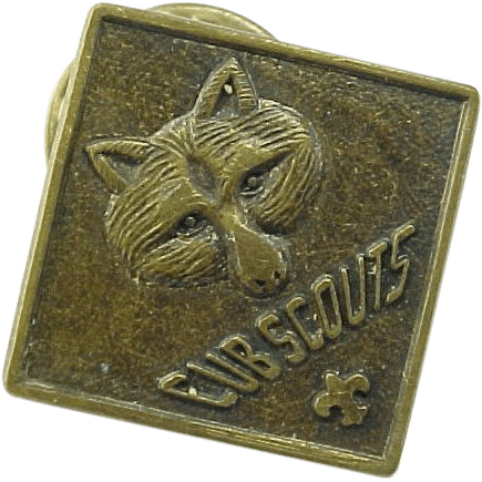Vintage Cub Scout Placement Pin From Kingdavidstreasures