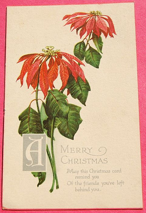 Art Nouveau Christmas Post Card Series No 169 Wilting