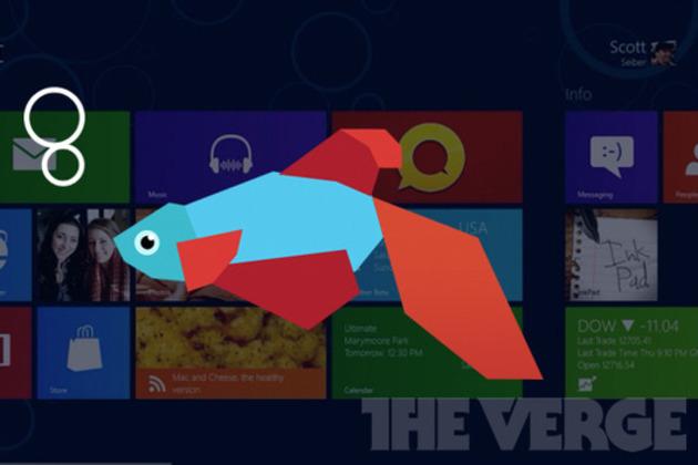 Windows 8 betta fish