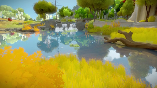 The Witness Guide Polygon