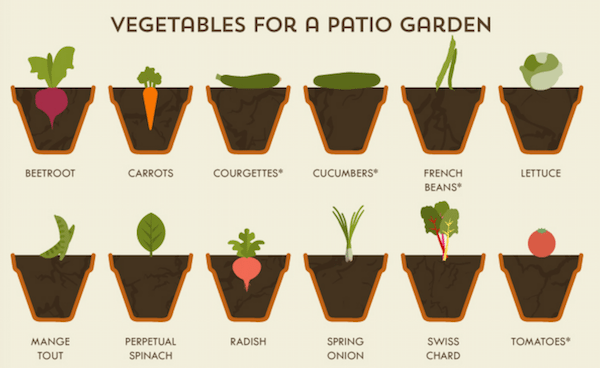 this vegetable garden cheat sheet is