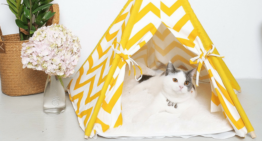 Cat Tents 6 Different Hideaways For Your Seclusive Feline