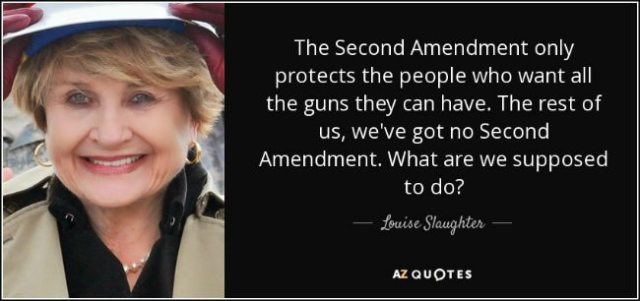 anti-gun quotes