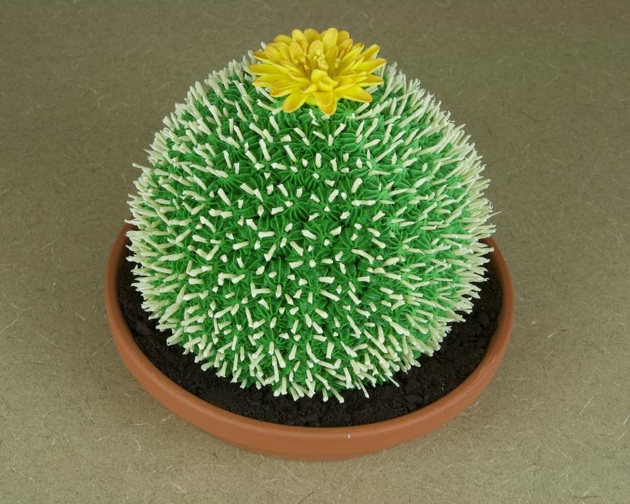Cactus Birthday Cake Cakecentral Com