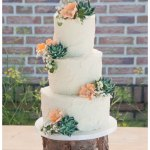 Rustic Weddingcake With Succulents Cakecentral Com