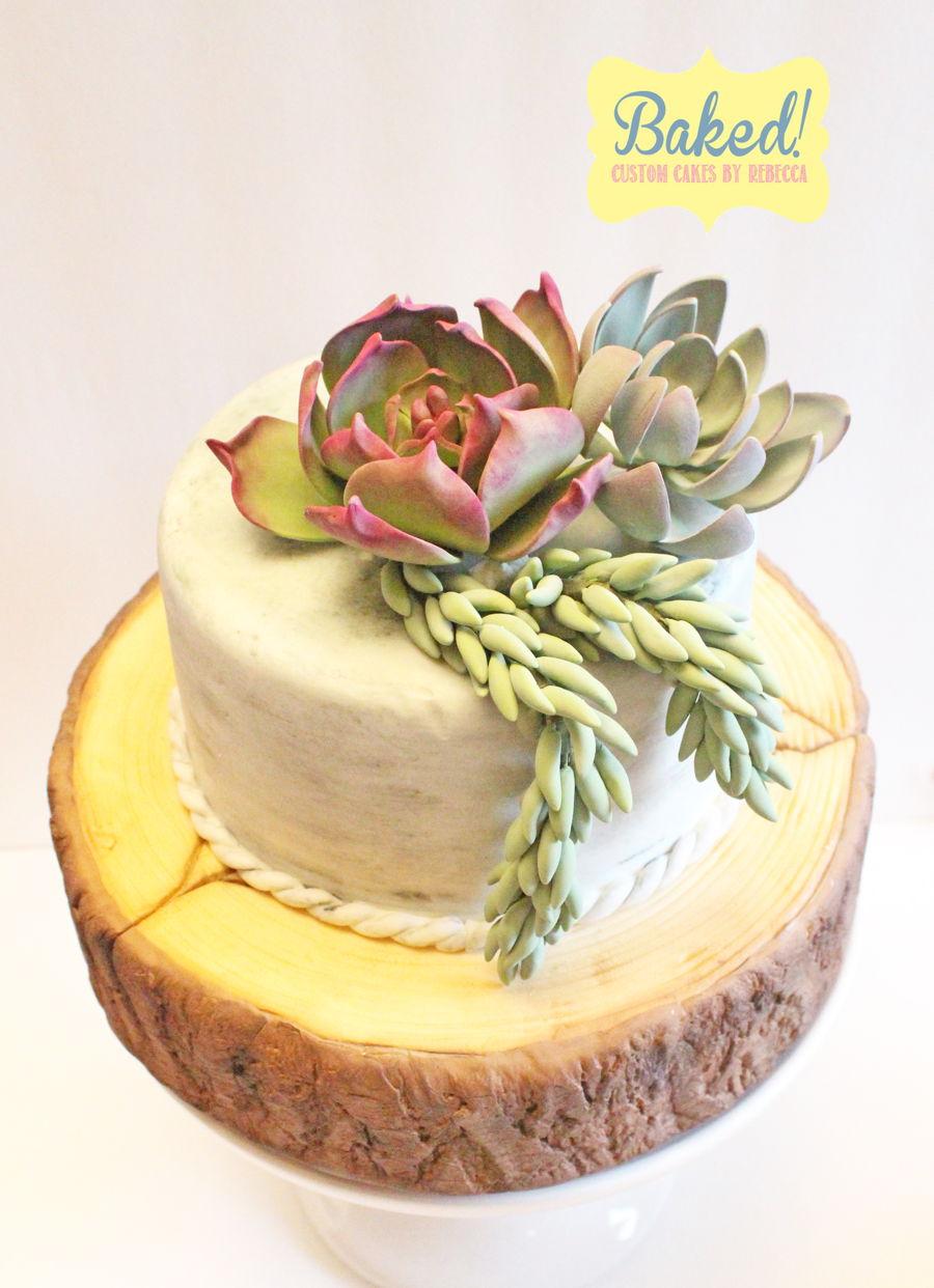 Succulent Wood Slab Cake Cakecentral Com