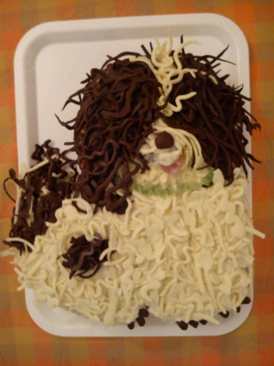 Havanese Dog Cake Cakecentral Com