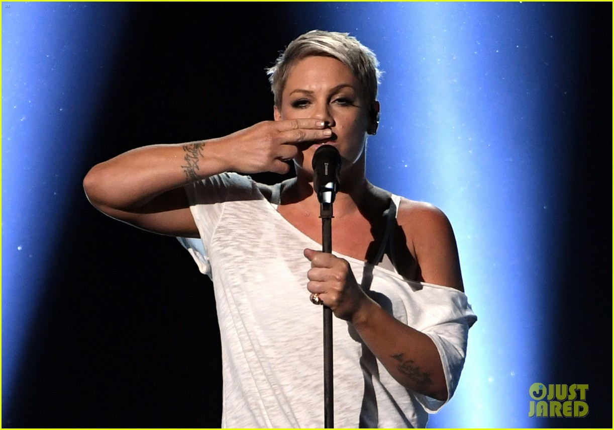 Pink Stays Grounded With An Emotional Performance Of Wild