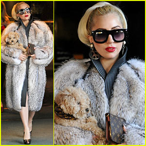 Image result for lady gaga in fur coat