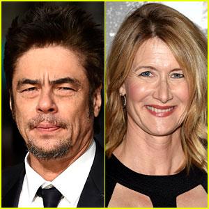 'Star Wars: Episode 8' Cast: Benicio Del Toro, Laura Dern & More Land Roles!