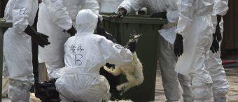 Senate Passes Bill To Prepare For Terrorist Attacks On Food Supply
