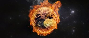 Scientist: Saying Global Warming Is Causing A Mass Extinction Is 'Junk Science'
