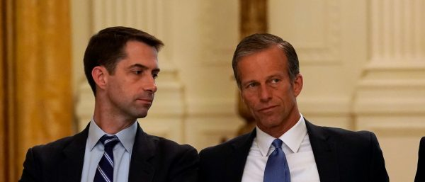 Cotton: Trump Wants Limits On Migration | The Daily Caller