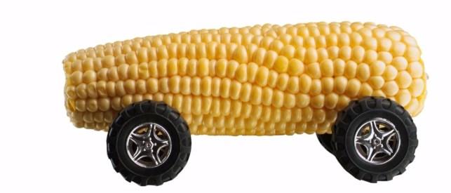 corn car ethanol Shutterstock Africa Rising