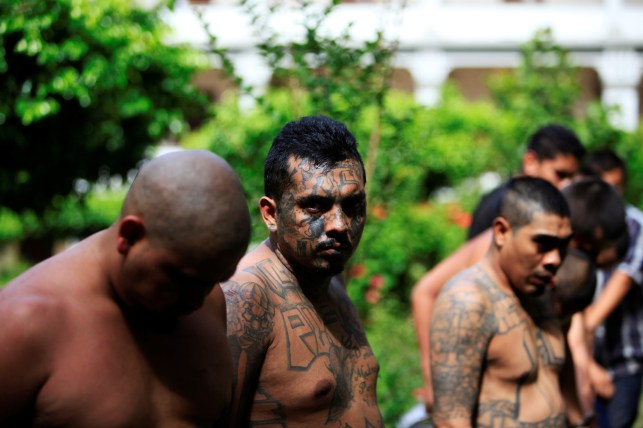 More Than 20 MS-13 Gang Members Arrested In California