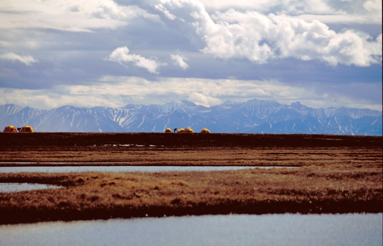 Bird research camp is seen within the 1002 Area of the Arctic National Wildlife Refuge