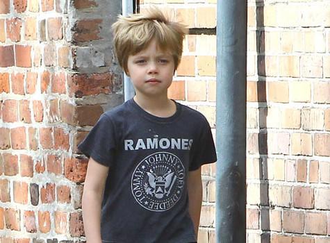 Есть ли у Анджелины Джоли и Бреда Питта свои дети Сколько