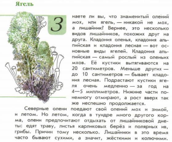 """Книга """"Зеленые страницы"""" рассказ """"Ягель"""": где читать ..."""