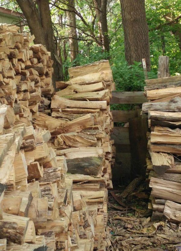 Как найти на фото с дровами - кота?