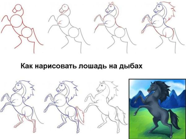 Как нарисовать лошадь в движении поэтапно карандашом?