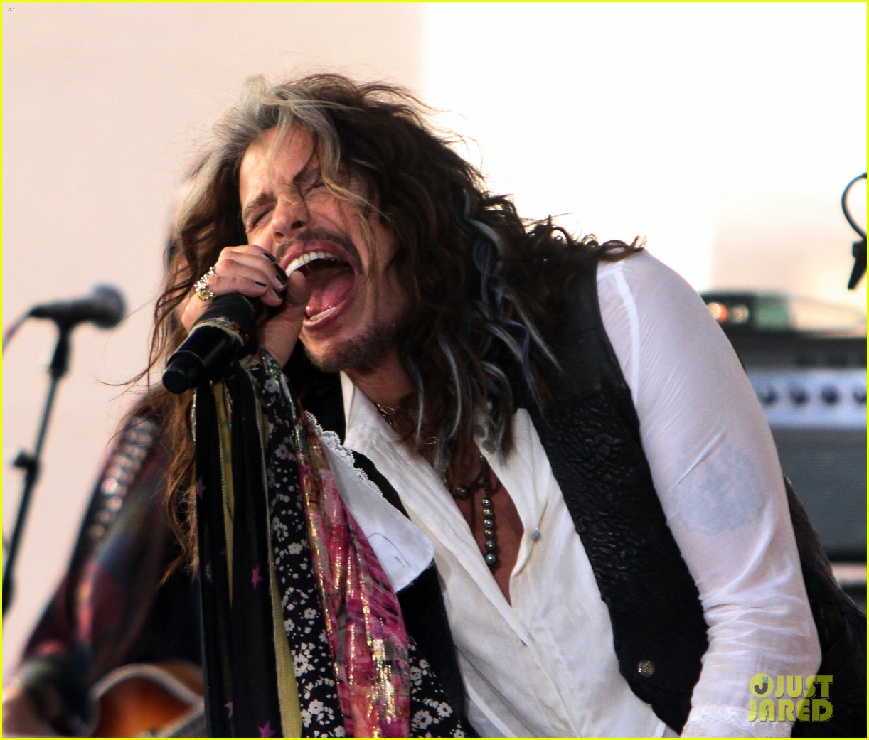 Steven Tyler Says Aerosmith Will Go On Farewell Tour In