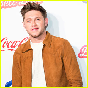 Niall Horan Drops 'On the Loose' Lyric Video - Watch Now!