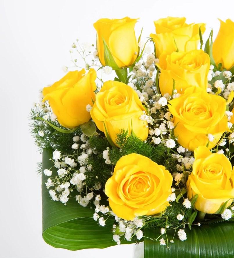 Rose Flower Good Morning Image Wajiflower Co