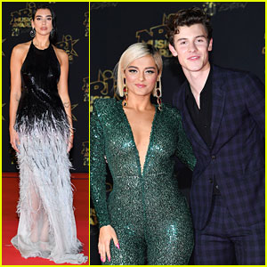 Shawn Mendes & Bebe Rexha Meet Up at NRJ Awards After Victoria's Secret Performances