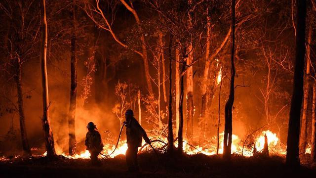 Kebakaran Hutan Australia Diprediksi Terjadi Hingga Beberapa Bulan ke Depan  - Global Liputan6.com