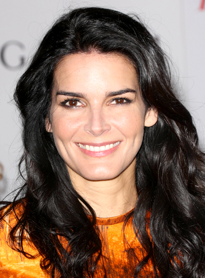 Angie Harmon Beauty Riot