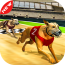 Dog real Racing  Derby Tournament simulator