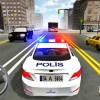 Police Real City Game