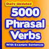 Most common Daily use English Phrasal Verbs