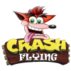 CRASH FLYING