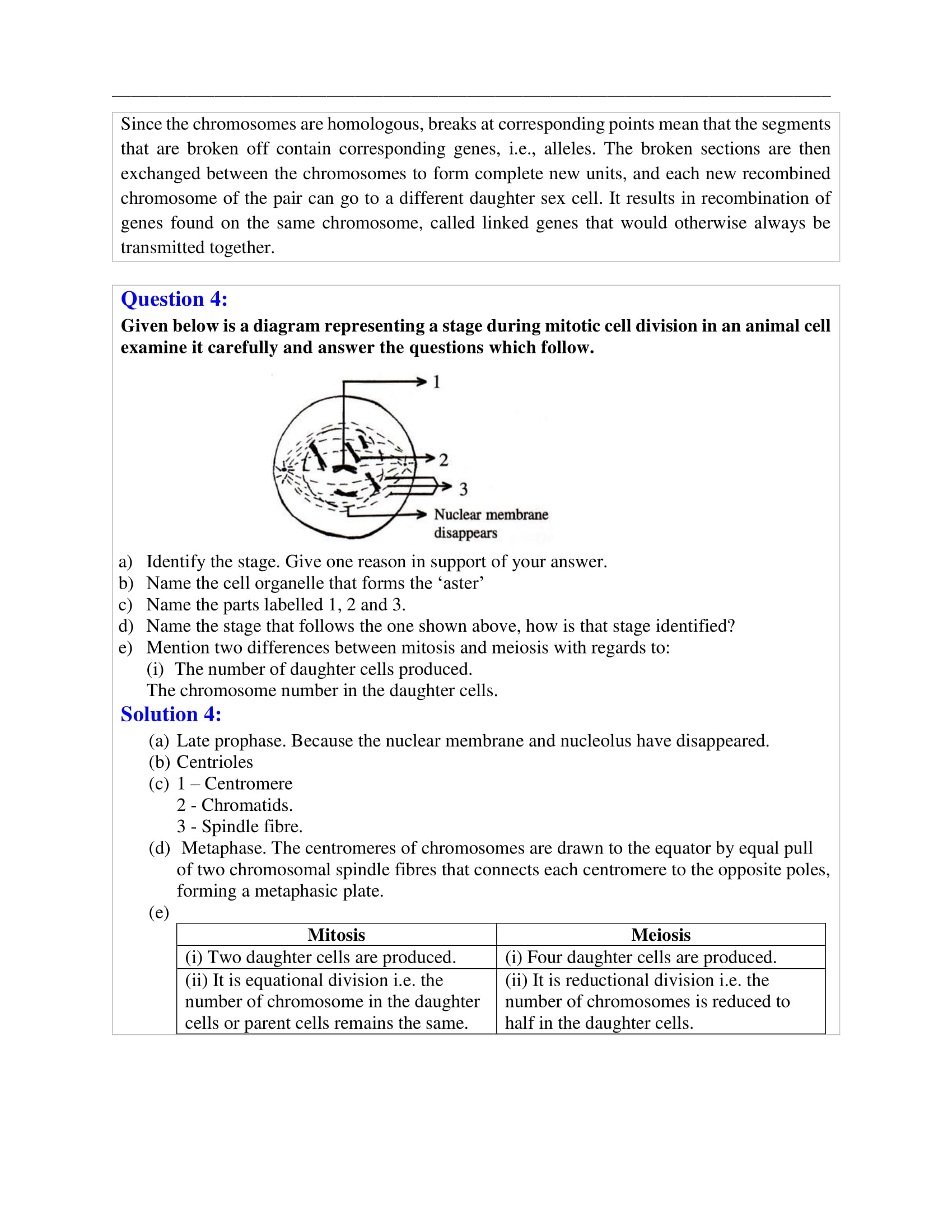 Icse Solutions For Class 10 Biology Selina Publishers Chapter 1 Cell Cycle Cell Division And