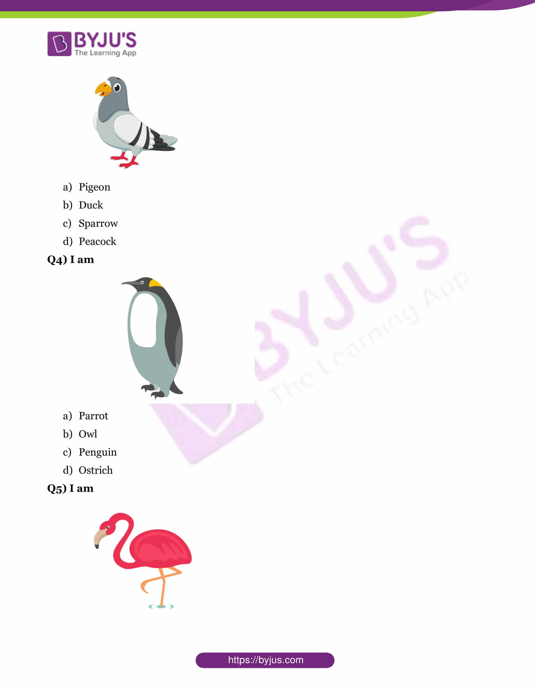 Gk Questions On Birds With Answers For Class 1