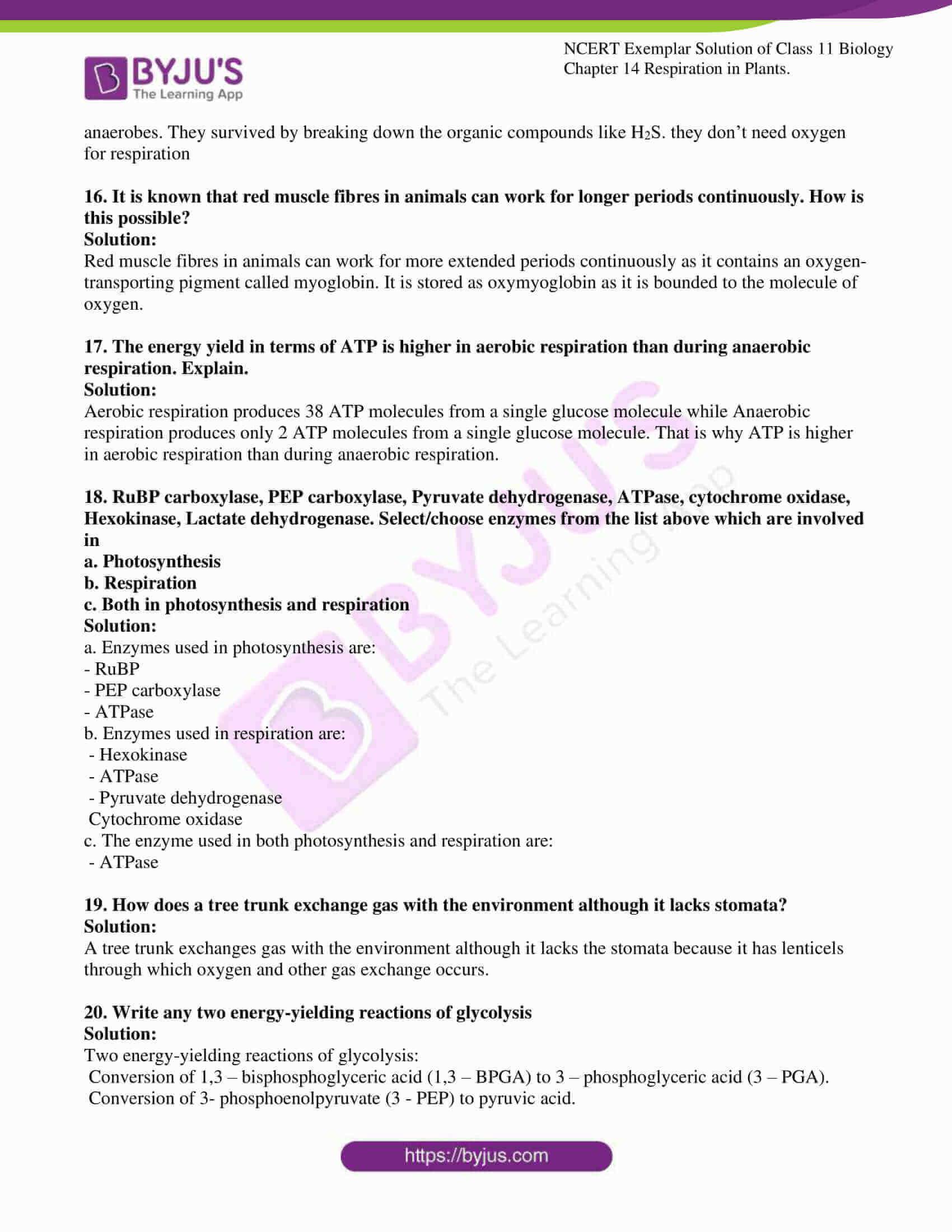 Ncert Exemplar Solution For Class 11 Biology Chapter 14