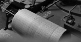 Northeastern Japan Hit by Four Earthquakes of Up to 6.1 Magnitude